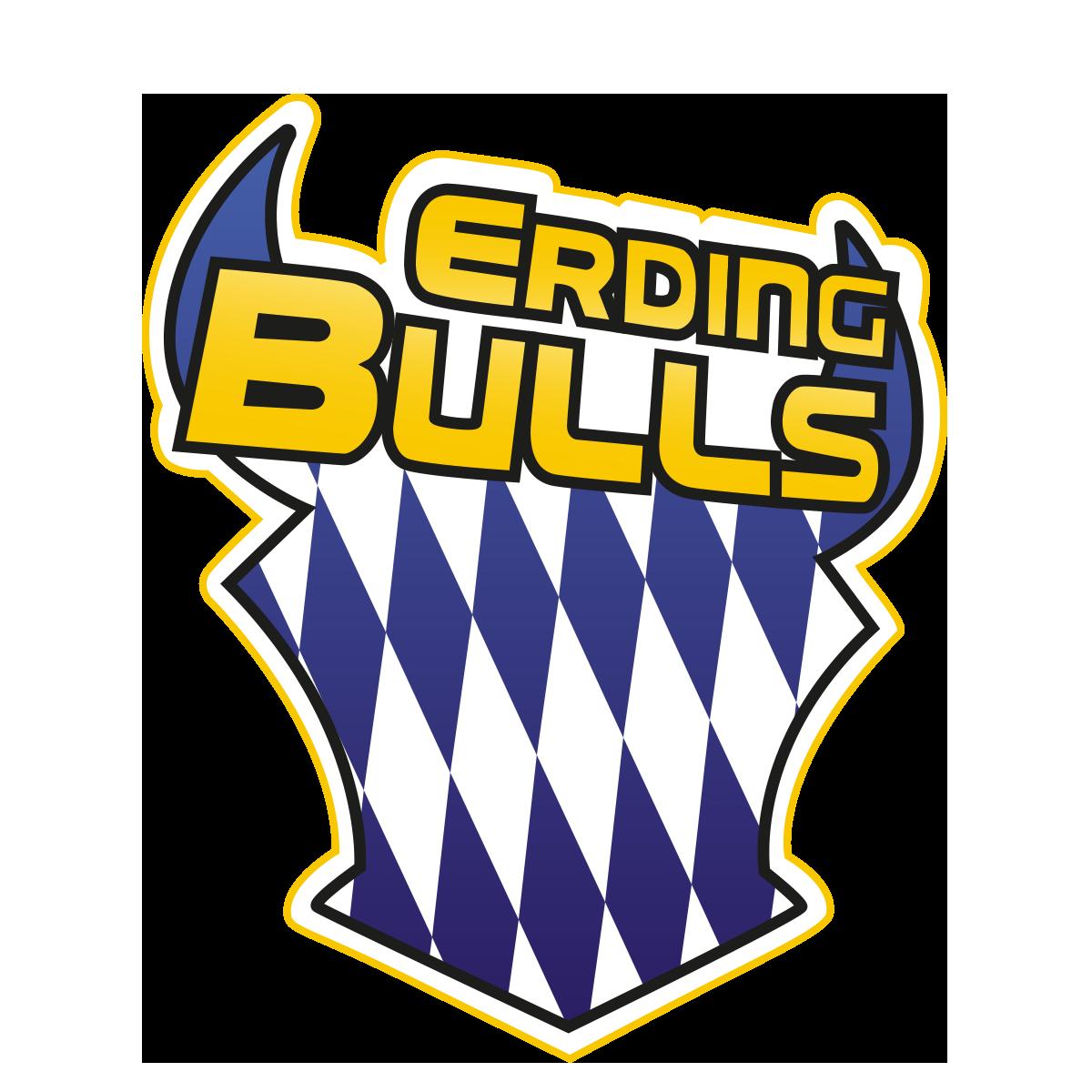 Logo Erding Bulls